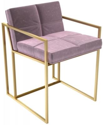 Regents Blush Velvet Chair with Brass Brushed Frame